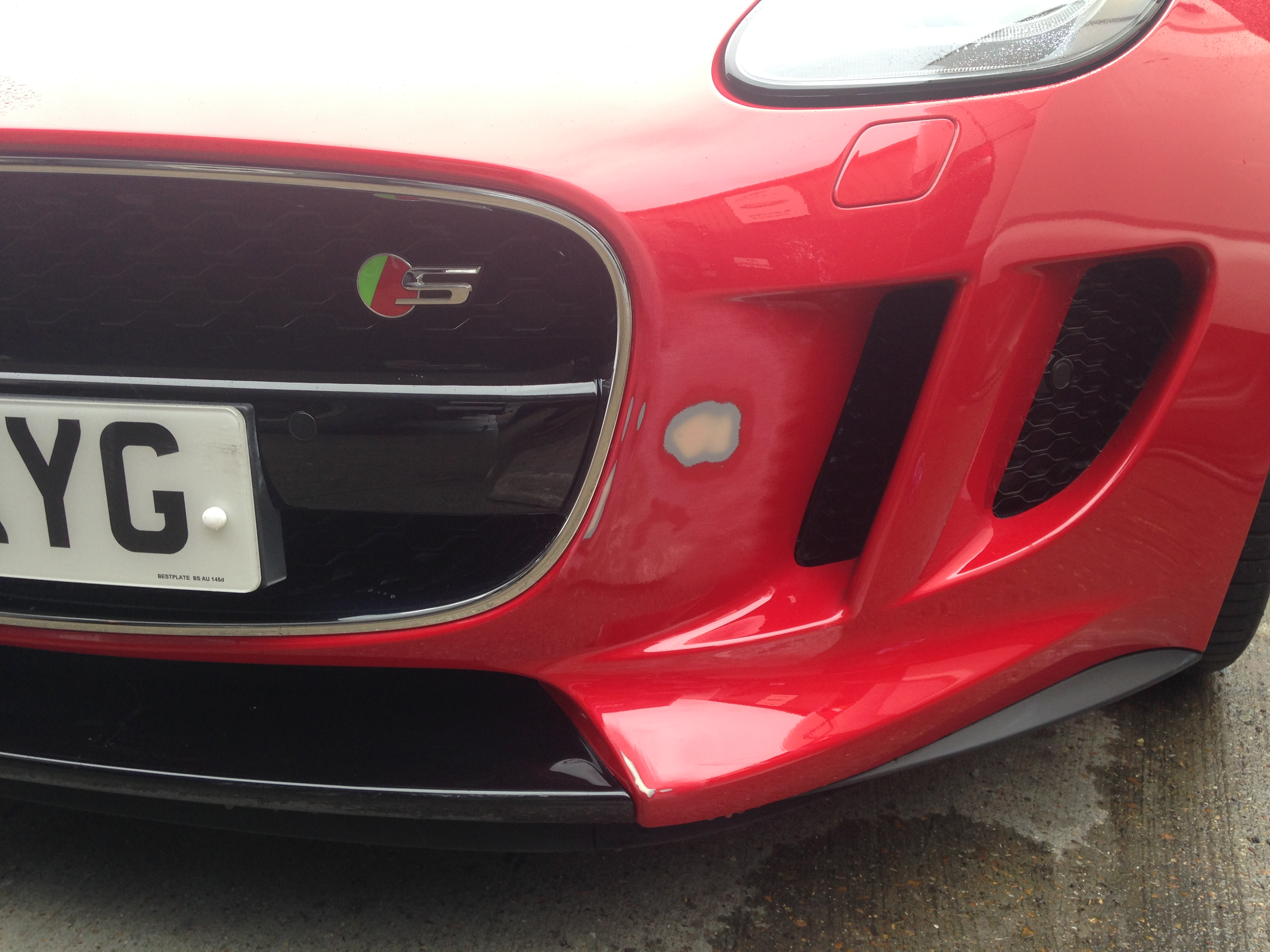Jaguar Before